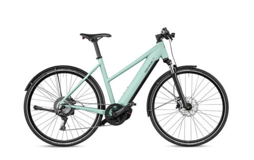 Riese and Muller Roadster Mixte Touring Saliva Matt - Propel E-Bikes