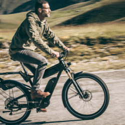 All you need ebike. Riese Mueller Delite GT Signature 2018