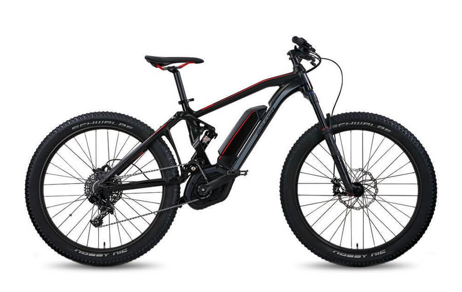 Raleigh Kodiak iE EMTB Step over frame