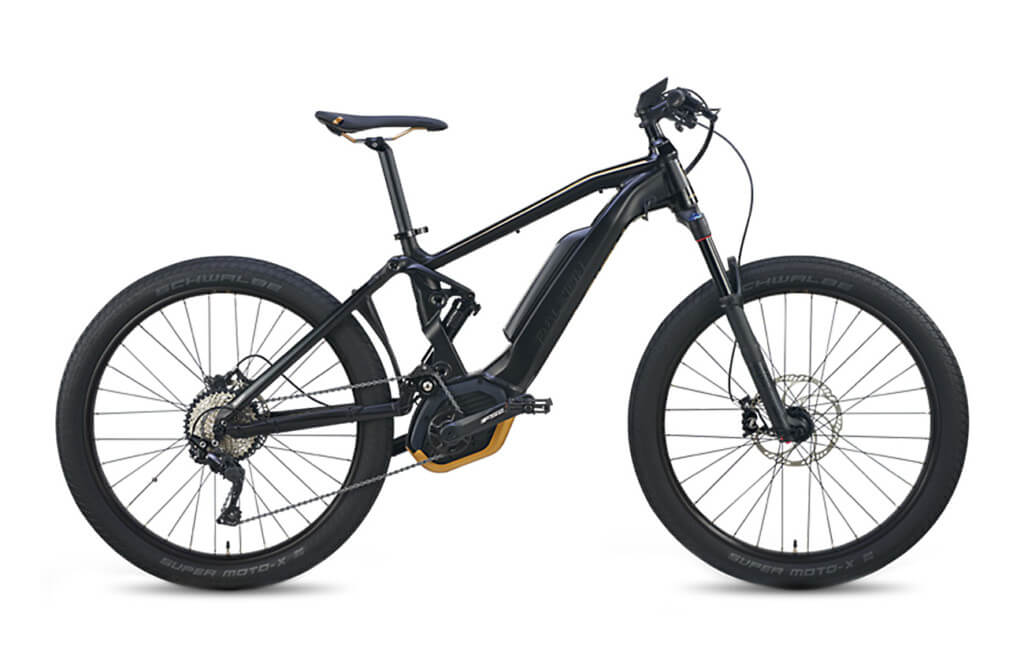 Raleigh Lore DS IE 2019