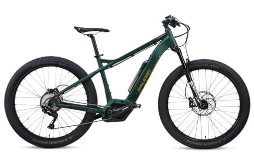 Raleigh Lore IE 2019 for sale - Propel eBikes